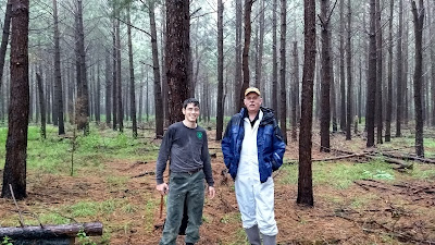 Bob Williams Bernie Isaacson Pine Barrens Restoration Site New Jersey Ecological Forest