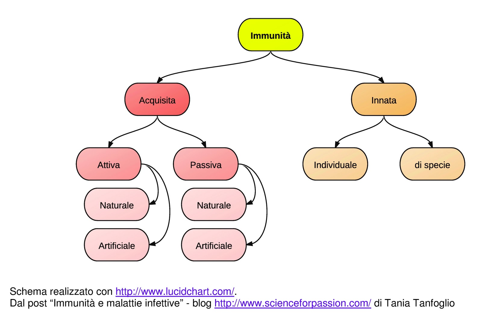 Science for passion immunit e malattie infettive for Ospite inglese