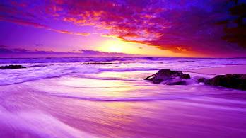 Beach, Sunset, Scenery, 4K, #6.2200