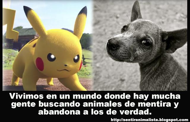 ACLARACIÓN: Sobre el abandono animal y Pokémon