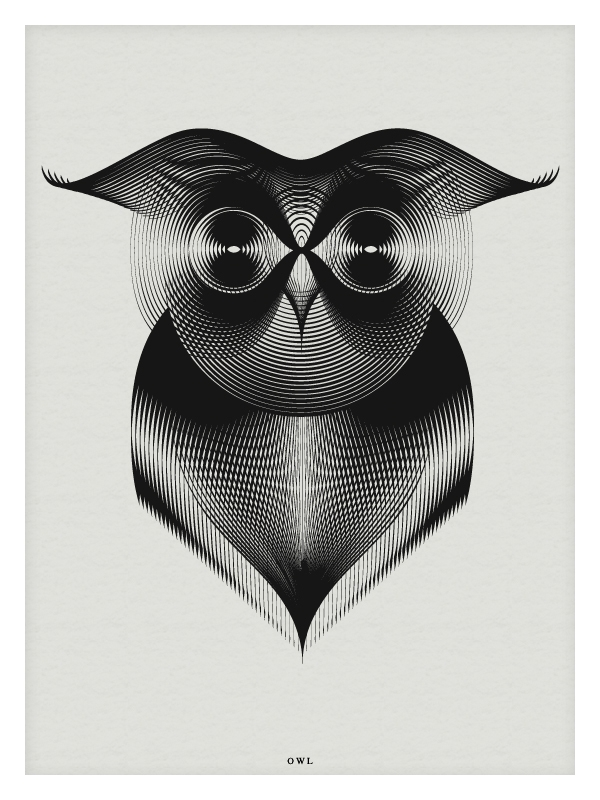 05-Owl-Andrea-Minini-Minimalist-and-Highly-Stylized-Drawings-www-designstack-co