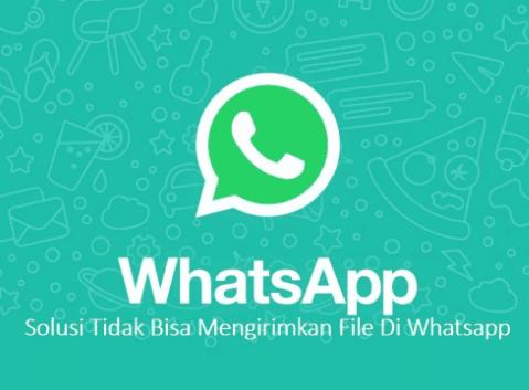 Cara Mudah Mengatasi WhatsApp (WA) Tidak Bisa Kirim dan Trima Gambar / Video