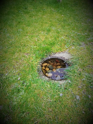 Glendalough, Wicklow.Ballaun Stone.
