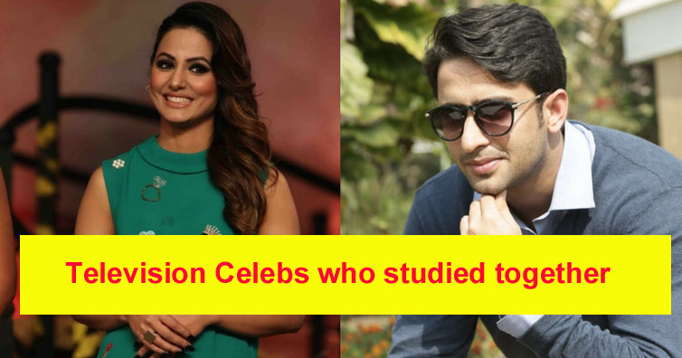 Meet television celebrities who studied together in the same