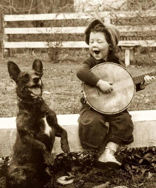 Tình bạn đáng ngưỡng mộ của trẻ con và thú cưng