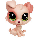 Littlest Pet Shop Pet Tales Albie Terri (#238) Pet