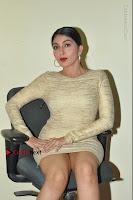 Actress Pooja Roshan Stills in Golden Short Dress at Box Movie Audio Launch  0066.JPG