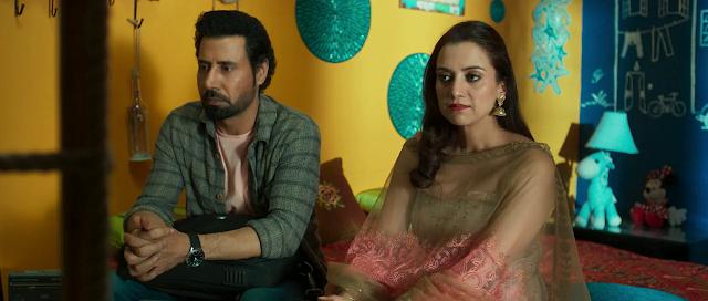 Naukar Vahuti Da (2019) Full Movie [Punjabi-DD5.1] 720p HDRip ESubs Download