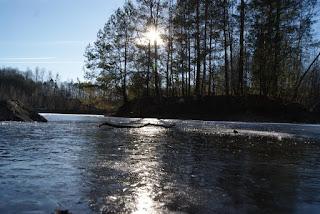 Ein zugefrorener See. Im Hintergrundscheint die Sonne durch ein paar Bäume, auf der Eisfläche liegt ein Ast.