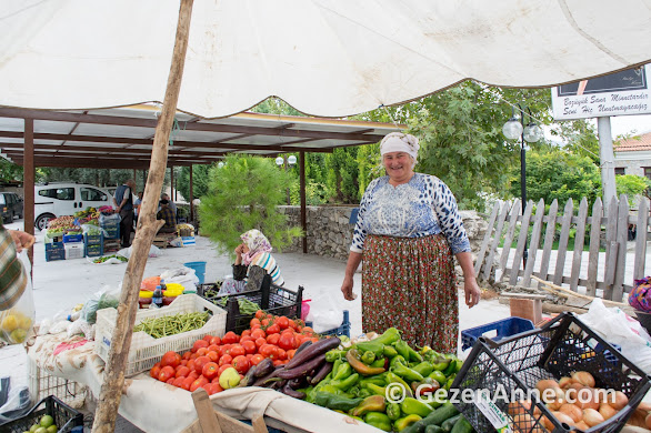 Bozüyük köyünde tatlı Egeli teyze meyve sebze satıyor, Muğla