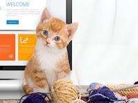 Ide Bisnis Pet Shop yang Sangat Menggiurkan