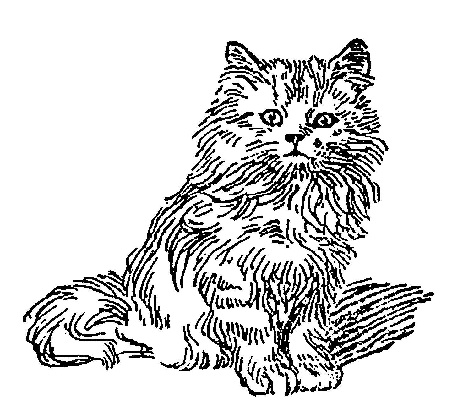Digital Stamp Design Printable Vintage Kitten Artwork