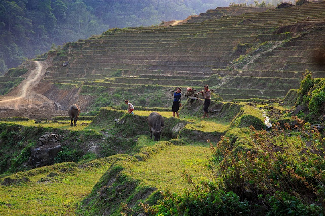 Start Your First Trip To Sapa By Easy Trekking