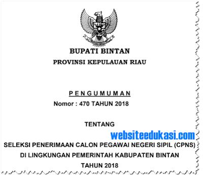 Pengumuman Pendaftaran CPNS 2018 Kabupaten Bintan