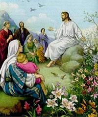 los lirios parabola de jesus