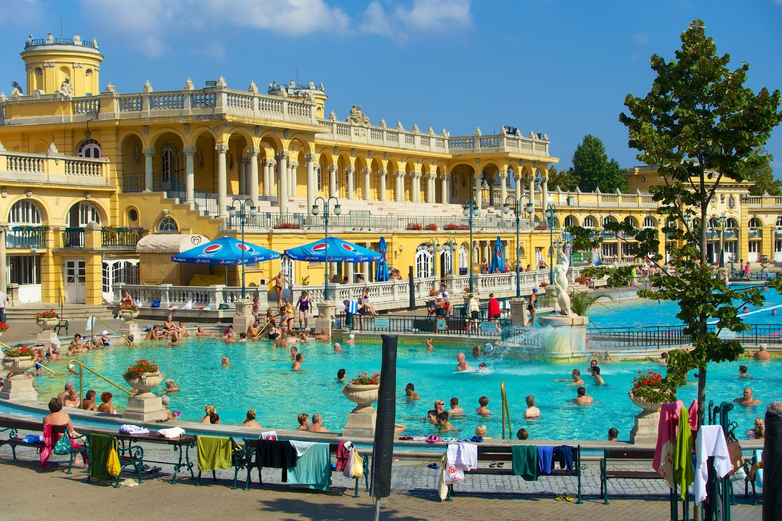 House With Pools Budapest Hungary Plain Chicken