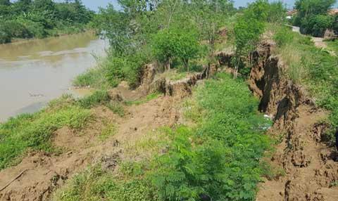 kondisi tanggul sungai cimanuk mengkhawatirkan