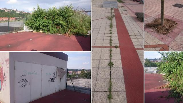 Dejadez y suciedad en la avenida Altos Hornos y en la calle El Carmen