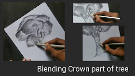 How to draw Trees, step by step tutorial for to draw Trees, easy tutorial for to draw tree, how to shading with graphite pencils, trees drawing, tree drawing