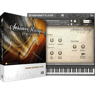 Native Instruments - Session Strings Pro