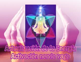 La Energía sigue siendo actualizada, es muy alta, está siendo movida a través del cuerpo y, en este momento, se está activando el nervio vago.