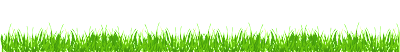 Png Grass Image