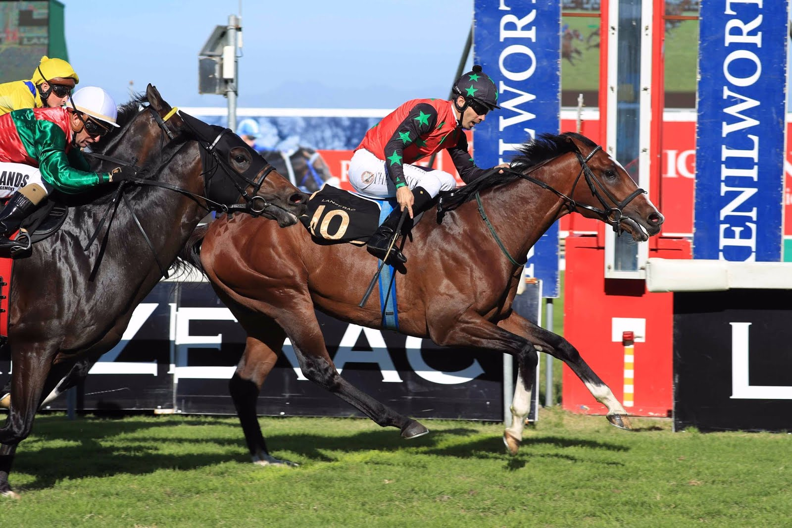 Rocket Countdown - Vodacom Durban July 2018 contender
