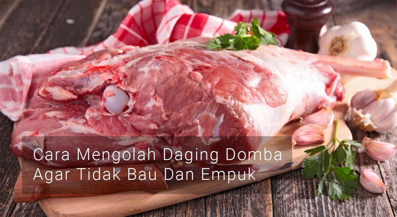 Cara Mengolah Daging Domba Agar Tidak Bau Dan Empuk