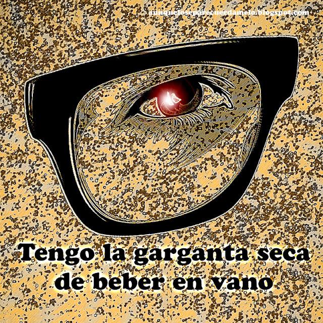 ilustracion de un ojo con gafas