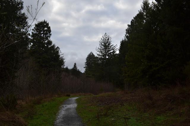 wet gravel line
