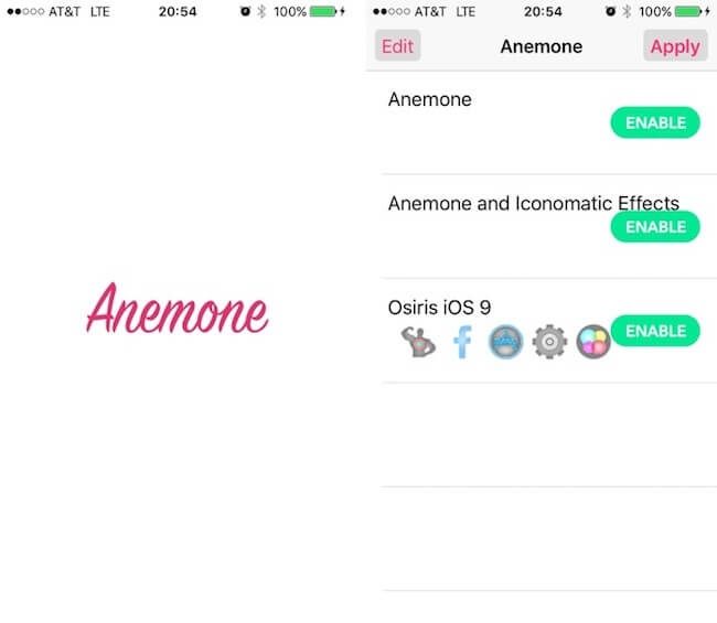 Tweak Anemone