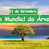 21 de Setembro Dia Internacional da Árvore - Entenda porque este dia foi criado