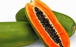 pepaya juga mengandung vitamin c