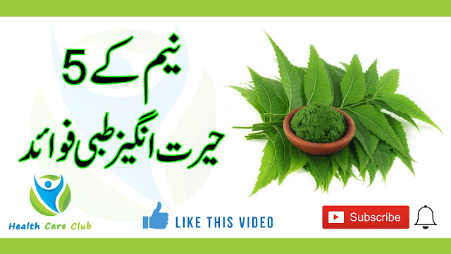 5 Amazing Health Benefits of Neem