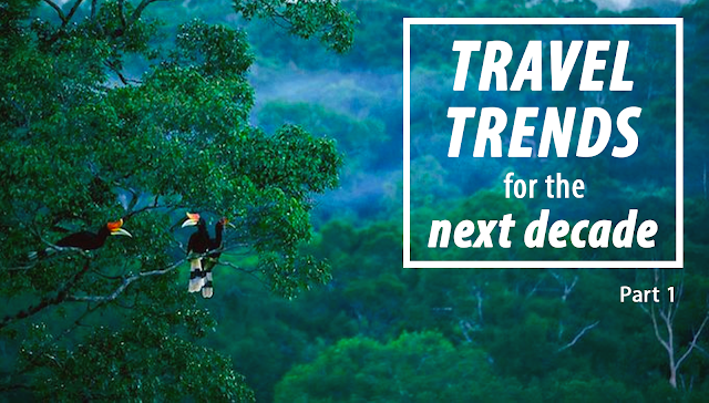 what are the travel trends