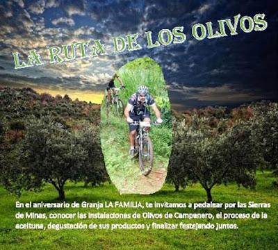 MTB - La ruta de los olivos (Minas, Lavalleja, 27/feb/2016)