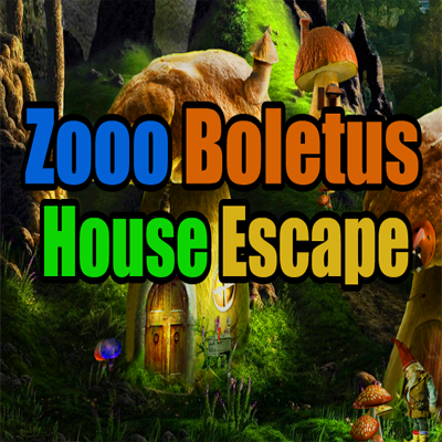 ZoooGames Boletus House Escape Walkthrough