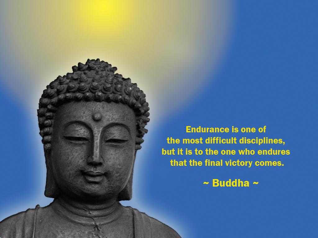 Buddha Quotes: Inspirational Desktop Wallpaper: November 2010