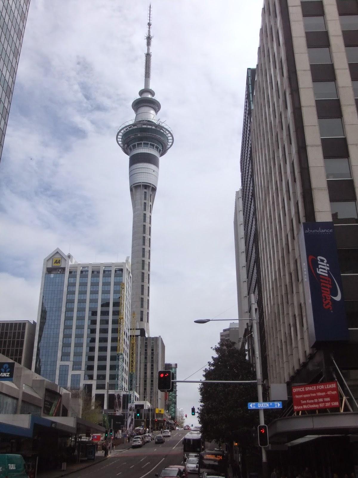 Stray New Zealand