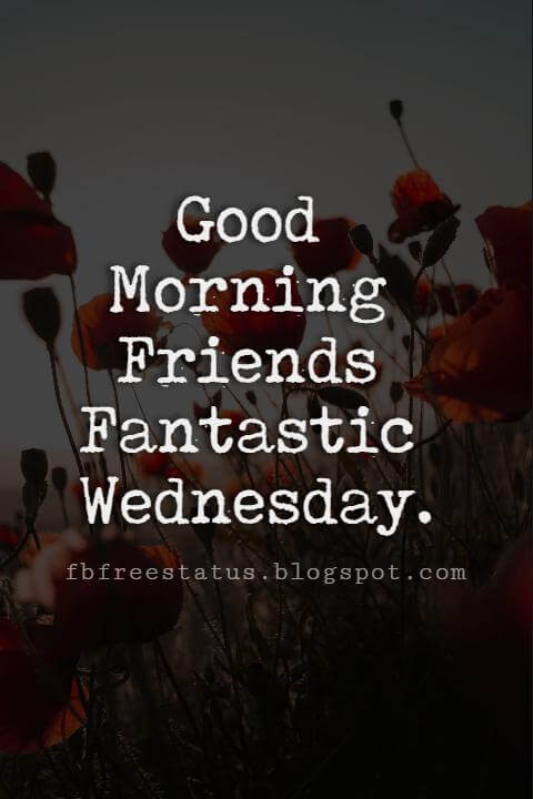 Happy Wednesday Pictures, Good Morning Friends Fantastic Wednesday.