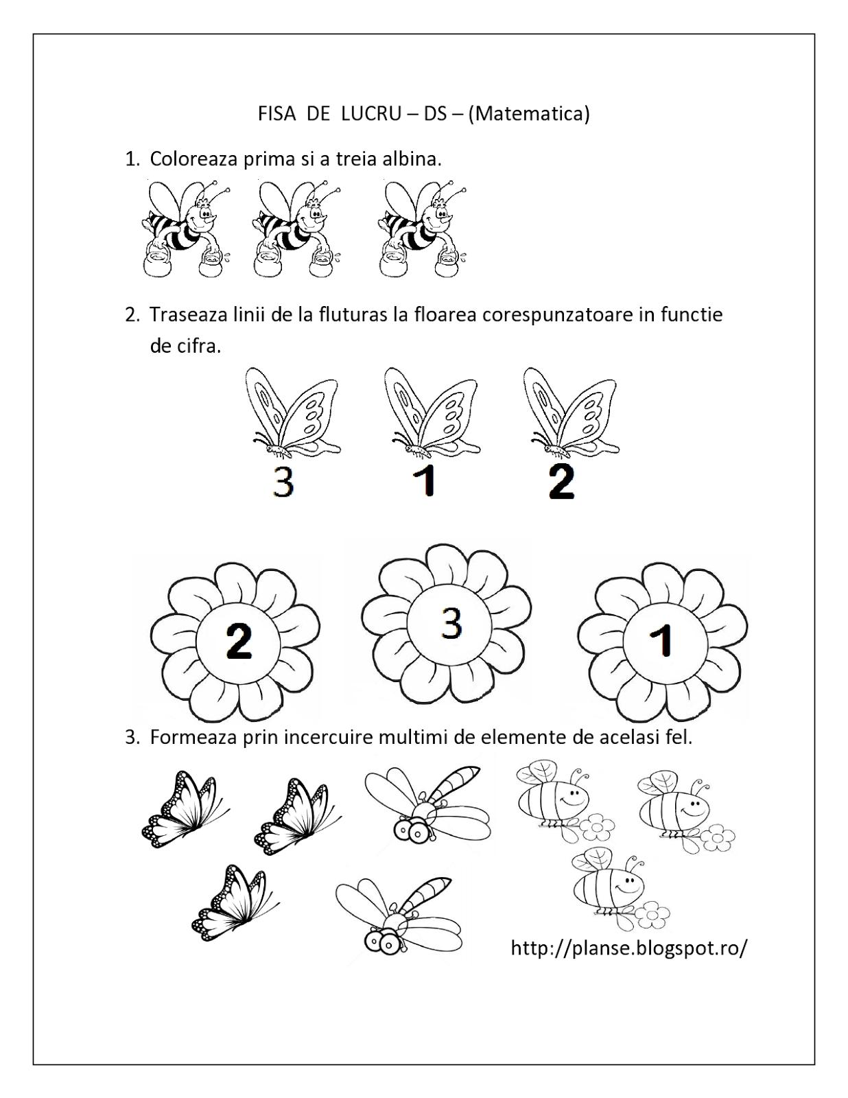 Plansa Colorat Omida  Auto Electrical Wiring Diagram