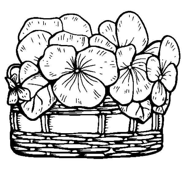 fleurs à dessiner des images