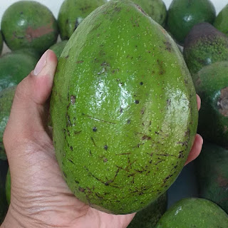 eating too much avocado side effects