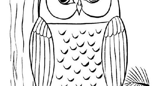 Sketsa Gambar Burung Hantu Hitam Putih Gambar Viral Hd