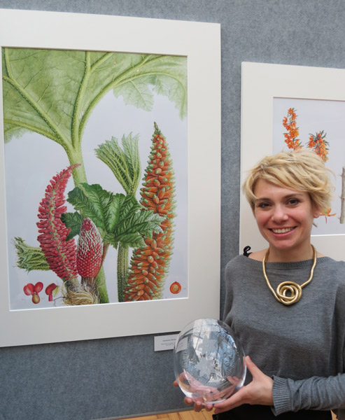 Rhs botanical art show 2014 medal winners