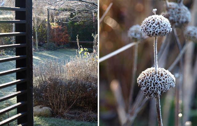 Smuk have om vinteren
