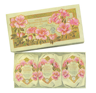beauty soap gift box image digital download