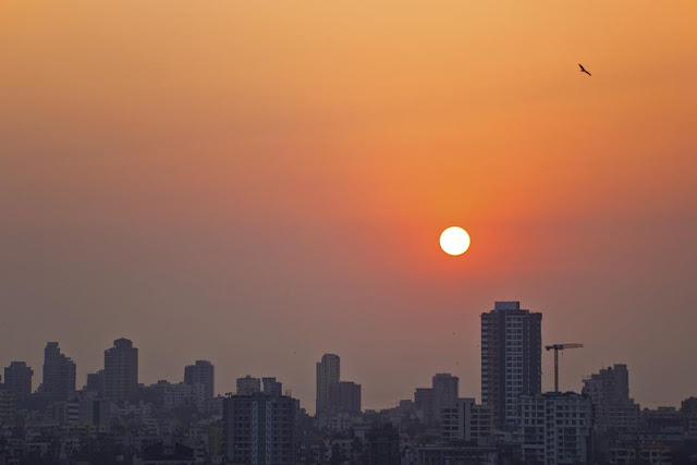 sunset, skywatch, colourful sky, bird, bandra, mumbai, india, urban, skyline,