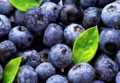 Les bleuets pour prévenir la maladie d'Alzheimer