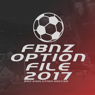 FBNZ Option File 2017